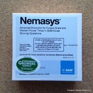 nemasys_-_steinernema_feltiae_-_evergreen_growers_supply
